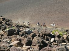 Giddy-up in the Haleakala Crater